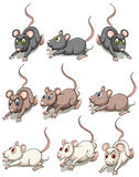 Grupa myszy ilustracji