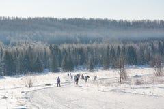 Grupa narciarki obruszenie od góry Narciarka ono ślizgać się na górze Narciarka i narty Fotografia Stock