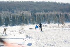 Grupa narciarki obruszenie od góry Narciarka ono ślizgać się na górze Narciarka i narty Obraz Stock