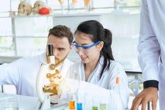 Grupa naukowa pracującego kładzenia substancji chemicznych medyczna próbka w próbnej tubce przy laboratorium wpólnie obrazy royalty free