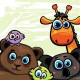 Grupa niedźwiedź, żyrafa, koala i ptaki zwierzę -, ilustracji