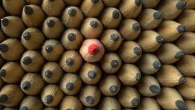 Grupa ołówki zdjęcie wideo