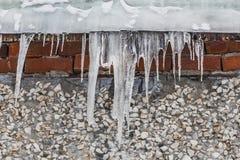 Grupa ostrzy biali przejrzyści sople jest wiszącym puszkiem od szarość dachu z lodem budynek od czerwonych cegieł i bielu obraz royalty free