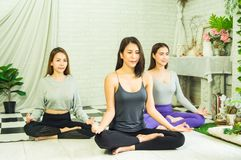 Grupa pi?kne kobiety w joga i medytacji klasach od?wie?a? ducha z poj?ciem relaks i cia?o i umys?, i fotografia royalty free