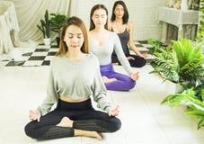 Grupa pi?kne kobiety w joga i medytacji klasach od?wie?a? ducha z poj?ciem relaks i cia?o i umys?, i zdjęcia stock