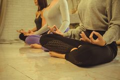 Grupa pi?kne kobiety w joga i medytacji klasach od?wie?a? ducha z poj?ciem relaks i cia?o i umys?, i obrazy royalty free