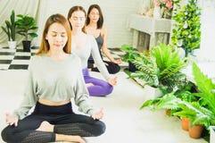Grupa pi?kne kobiety w joga i medytacji klasach od?wie?a? ducha z poj?ciem relaks i cia?o i umys?, i zdjęcie stock
