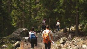 Grupa podróżnicy iść góry Gruzja zbiory