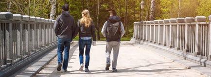 Grupa przyjaciele chodzi w wiosna parku Sztandar dla strony internetowej zdjęcie stock