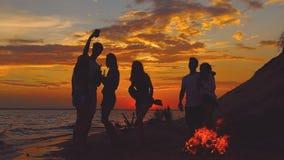 Grupa przyjaciele cieszy się dobrego czas zdjęcie wideo