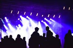 Grupa przyjaciele cieszy się festiwal muzyki wpólnie Zdjęcia Royalty Free