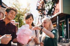 Grupa przyjaciele je bawełnianego cukierek w parku rozrywki Obrazy Stock