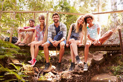 Grupa przyjaciele Na spaceru obsiadaniu Na Drewnianym moscie W lesie Fotografia Royalty Free
