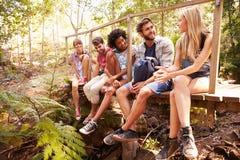 Grupa przyjaciele Na spaceru obsiadaniu Na Drewnianym moscie W lesie Obraz Stock