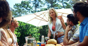 Grupa przyjaciele oddziała wzajemnie z each inny podczas gdy mieć napój przy outdoors grilla przyjęciem zbiory wideo
