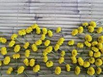 Grupa przypadkowy nagietka kwiat na bambusowym drewnianym lampasa tle Zdjęcie Royalty Free