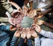 Grupa różnorodne palmy okrążający poparcie wpólnie obrazy royalty free