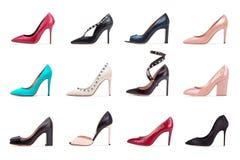Grupa różnorodni kobieta buty na białym tle Obraz Stock
