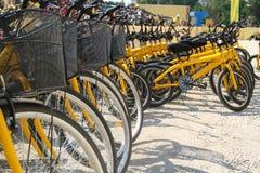 grupa rowery Zdjęcie Stock