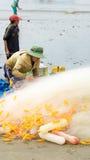 Grupa rybaka ciągnienia ryba sieć Zdjęcie Royalty Free