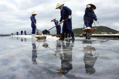 Grupa saltworker uprawy sól przy salina. PÓŁDUPKI RIA,  Zdjęcie Stock