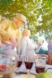 Grupa starsi ludzie karta do gry w lecie Zdjęcia Royalty Free