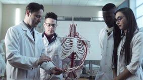 Grupa studenci medycyny przy anatomia wykładem zdjęcie wideo