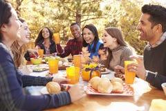 Grupa szczęśliwi przyjaciele je i śmia się przy stołem przy grillem fotografia royalty free