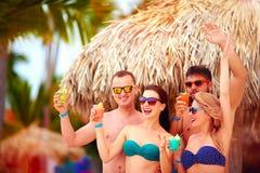 Grupa szczęśliwi przyjaciele ma zabawę na tropikalnej plaży, wakacje letni przyjęcie Zdjęcia Royalty Free