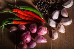 Grupa Tajlandzki karmowy przyprawowy czosnek, szalotki, chili, czarny pieprz Zdjęcie Royalty Free
