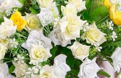 Grupa tkaniny róży kwiat Zdjęcia Royalty Free
