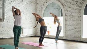 Grupa trzy młodej kobiety ćwiczy joga robi elementom słońca witania Surya namaskara na joga matach w świetle zbiory wideo
