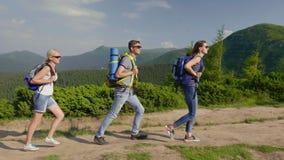 Grupa turyści cieszy się podwyżkę w górach Iść na malowniczym tle góry, jasny letni dzień zbiory wideo