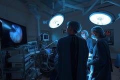 Grupa weterynarz operaci funkcjonujący pokój Obraz Stock