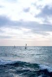Grupa windsurfers na deskach w falistym morzu Zdjęcie Royalty Free