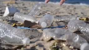 Grupa wolontariuszi czyści w górę plaży linii Kobieta podnosi plastikową butelkę i rzuca w torbę zdjęcie wideo