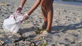 Grupa wolontariuszi czyści w górę plaży linii Kobieta podnosi plastikową butelkę i rzuca w torbę zbiory wideo