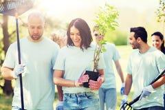 Grupa wolontariuszi z drzewami i świntuchem w parku Fotografia Royalty Free