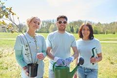 Grupa wolontariuszi z drzewnymi rozsadami w parku Zdjęcia Royalty Free