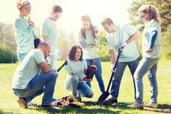 Grupa wolontariuszi zasadza drzewa w parku Fotografia Stock