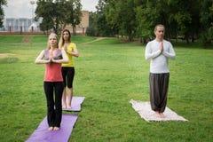 Grupa yogis w naturze wykonuje oddychań ćwiczenia zdjęcia royalty free
