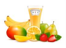 Grupa zdrowa owoc. Diety pojęcie. Obrazy Royalty Free