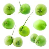 Grupa zielona kokosowa owoc odizolowywająca na białym tle obrazy royalty free