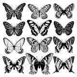Grupo abstrato gráfico das borboletas Rebecca 36 ilustração do vetor