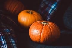 Grupo alaranjado das abóboras no fundo azul da manta em casa Objeto do outono, símbolo da queda, conceito do dia da ação de graça Fotos de Stock