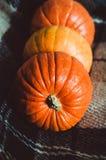 Grupo alaranjado das abóboras no fundo marrom da manta em casa Objeto do outono, símbolo da queda, conceito do dia da ação de gra Imagens de Stock Royalty Free