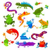 Grupo anfíbio reptilian animal da ilustração do animal de estimação da iguana e do camaleão da tartaruga do lagarto do caráter do ilustração stock