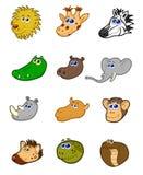 Grupo animal africano da cabeça Foto de Stock