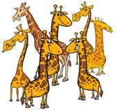 Grupo animal de los caracteres de las jirafas de la historieta libre illustration