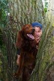 Grupo animal do rescua Cão do salvamento O trabalho de um veterinário Salvamento animal Fotos de Stock Royalty Free